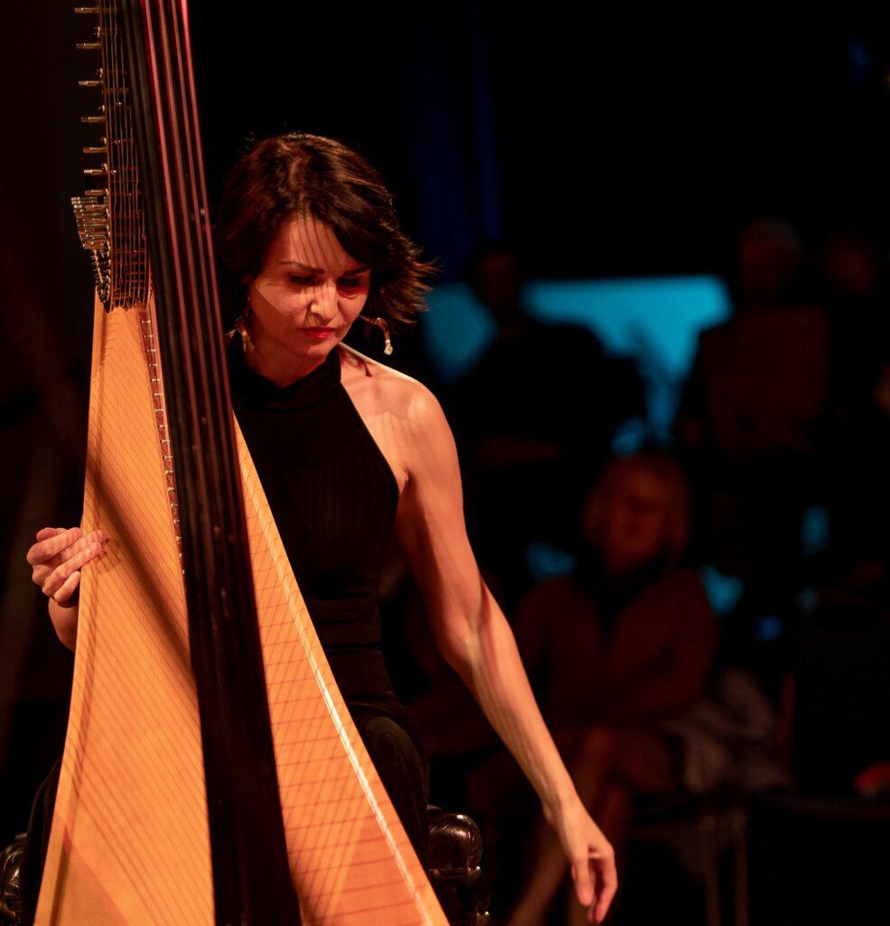 Alina Bzhezhinska's Hip Harp